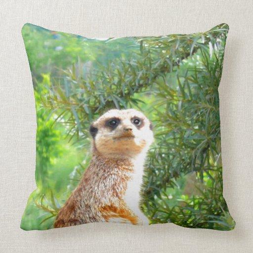mire adelante para amar la naturaleza animal del m almohada