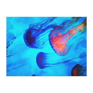Mire el flujo del resplandor de la jalea lona estirada galerías