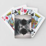 Mire mi cara de póker, gato barajas