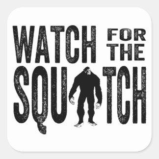 Mire para el Squatch - Bigfoot divertido Calcomanías Cuadradas