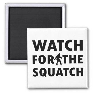 Mire para Squatch Imán Cuadrado