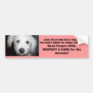¡Míreme en el ojo! Mensaje del perrito Pegatina Para Auto