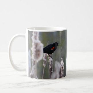 Mirlo de alas rojas phoeniceus del Agelaius Taza