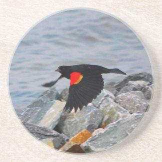 Mirlo de alas rojas - práctico de costa posavasos manualidades