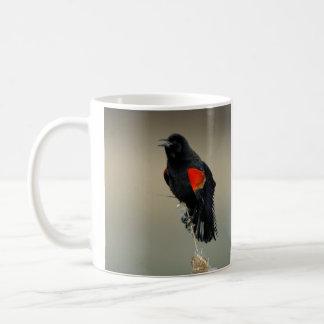 Mirlo de alas rojas tazas de café