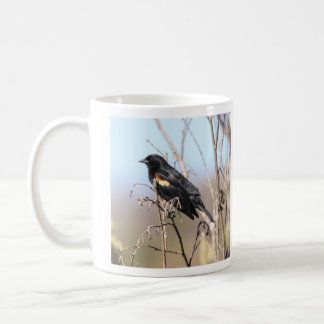 Mirlo de alas rojas taza de café