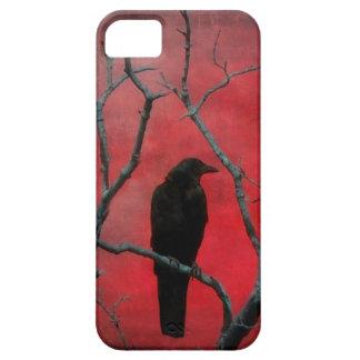 Mirlo en el rojo iPhone 5 Case-Mate protector