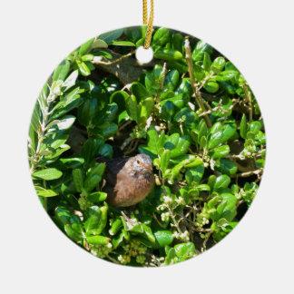 Mirlo en un arbusto del laurel adorno navideño redondo de cerámica