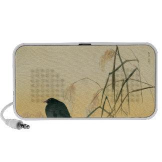 Mirlo, período de Edo Laptop Altavoces