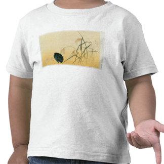 Mirlo, período de Edo Camisetas