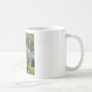 Mirror Biird Classic White Coffee Mug