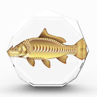 Mirror Carp Vector Art graphic design file Award
