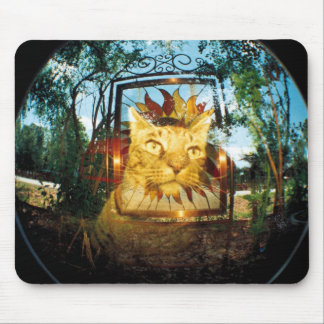 Mirror Cat Mouse Pad