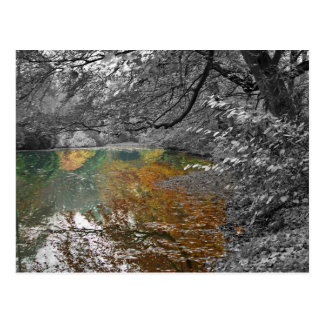 Mirror garden postcard