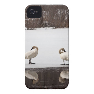 Mirror Image Case-Mate iPhone 4 Case