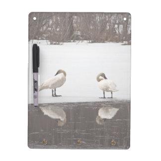 Mirror Image Dry Erase Board