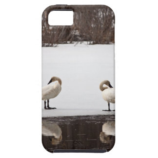 Mirror Image iPhone SE/5/5s Case