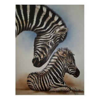 Mirror Image (zebra) Accessories Postcard