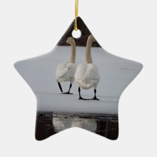 Mirror Mirror Ceramic Ornament