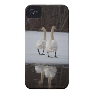 Mirror Mirror iPhone 4 Case-Mate Case