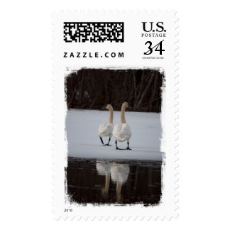 Mirror Mirror Postage Stamp