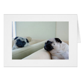 Mirror Pugs Card