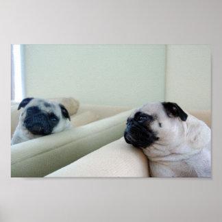 Mirror Pugs Poster
