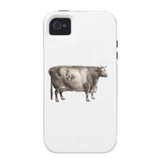 Mis bóvidos del mascota Bull o vaca iPhone 4 Carcasa