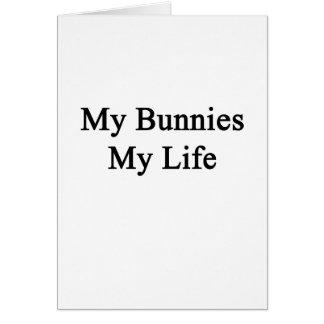 Mis conejitos mi vida tarjeta de felicitación