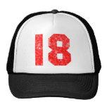 Mis décimo octavos regalos de cumpleaños gorras de camionero