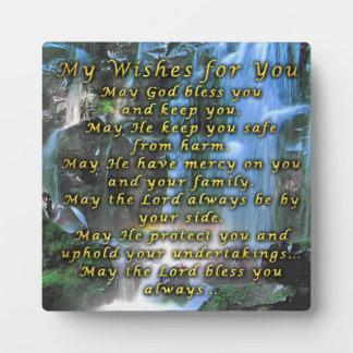 Mis deseos para usted placas con foto