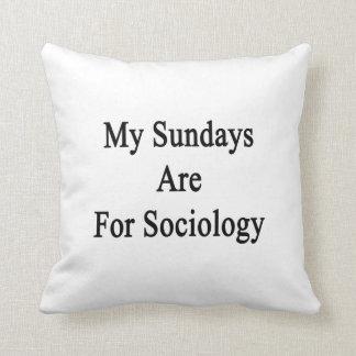Mis domingos están para la sociología cojin