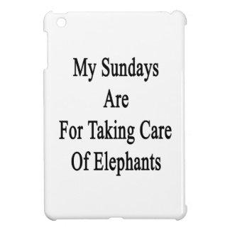 Mis domingos están para tomar el cuidado de