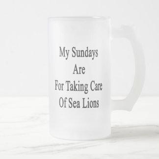Mis domingos están para tomar el cuidado de leones taza de cristal