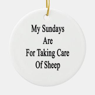 Mis domingos están para tomar el cuidado de ovejas ornato