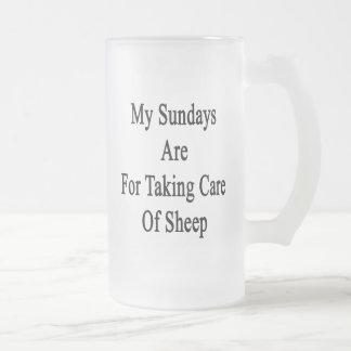Mis domingos están para tomar el cuidado de ovejas tazas de café