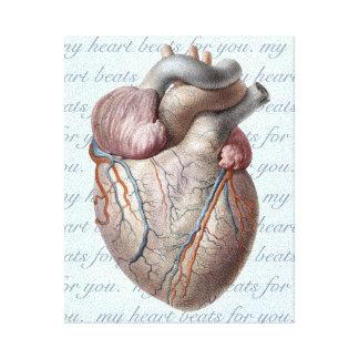 Mis golpes de corazón para usted impresión en lienzo estirada