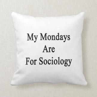 Mis lunes están para la sociología cojin