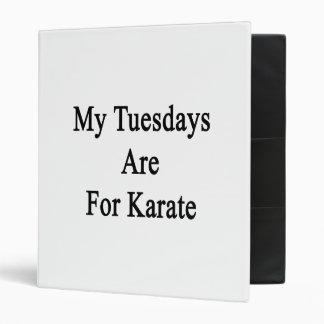 Mis martes están para el karate