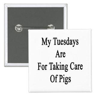 Mis martes están para tomar el cuidado de cerdos chapa cuadrada 5 cm