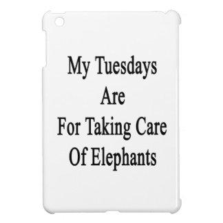 Mis martes están para tomar el cuidado de