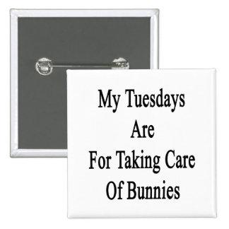 Mis martes están para tomar el cuidado de chapa cuadrada 5 cm