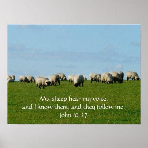 Mis ovejas oyen mi poster de la voz