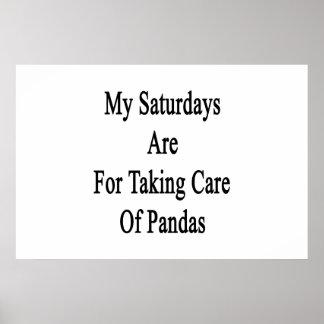 Mis sábados están para tomar el cuidado de pandas impresiones