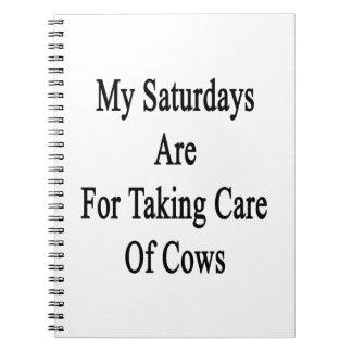 Mis sábados están para tomar el cuidado de vacas libreta