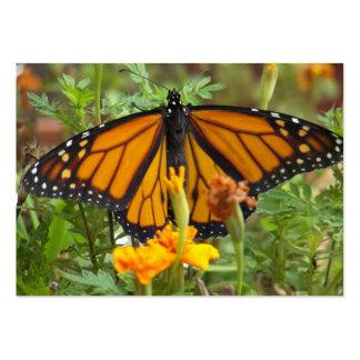 Mis tarjetas del Mariposa-negocio del monarca Tarjetas De Visita Grandes