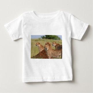 Mis tres hijos camisas