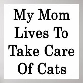 Mis vidas de la mamá para tomar el cuidado de gato impresiones