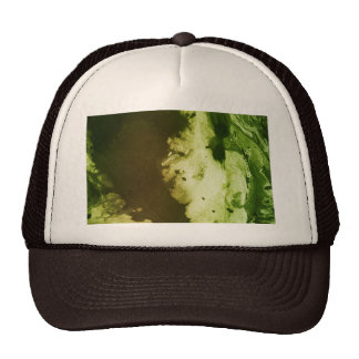 Misc picture 9 - (psychadelic paper green & white) trucker hat