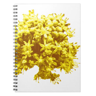 Miscellaneous - Abstract Gold Flowers Twenty-One Spiral Notebook
